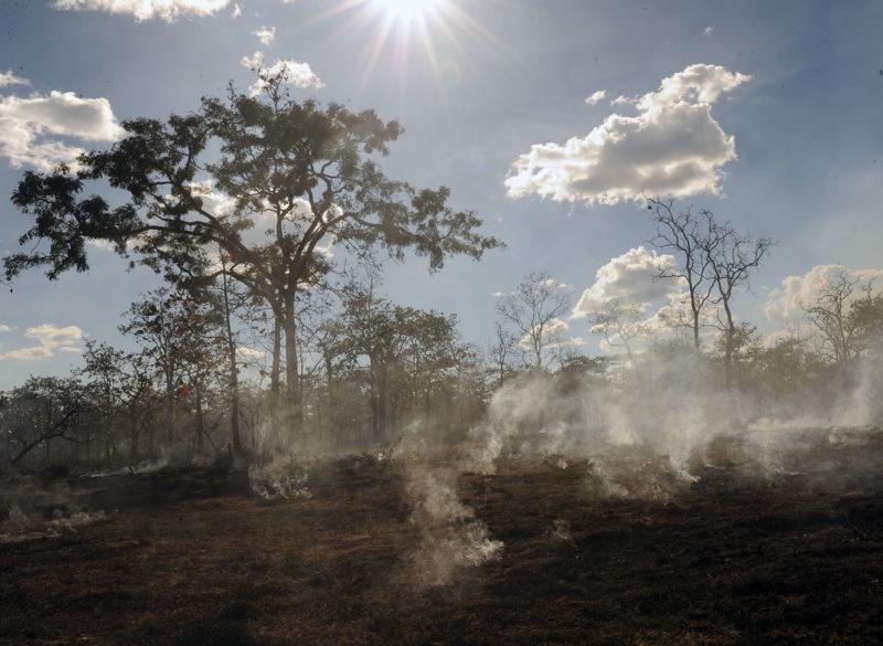 Tackling the threats - Western Siem Pang